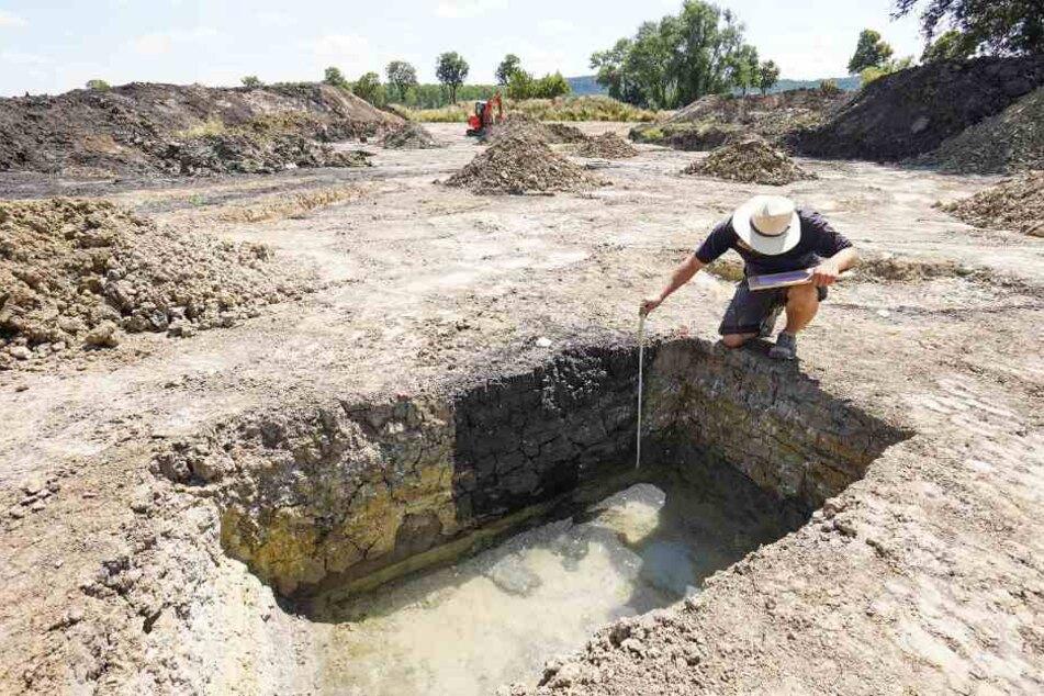 Die Ausgrabungen der Forscher wiesen auf einen Massenmord hin. (Symbolbild)