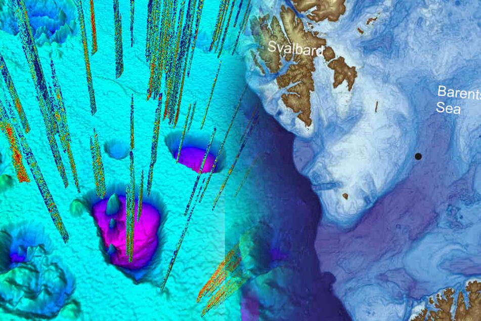 Wegen Klimawandel: Wiederholt sich bald ein Albtraum im Meer?