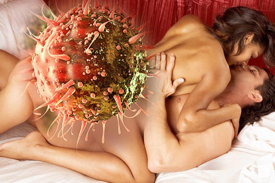 Das tödliche Sex-Virus kann Leukämie auslösen, die schnell zum Tod führt.