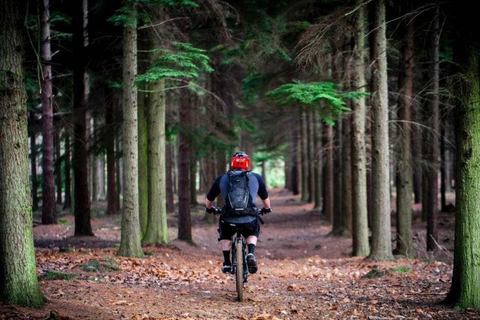 Bevor man sich ein neues Fahrrad zulegt, sollte man mit einem geliehenen Rad zunächst in sicherer Umgebung die Grundlagen neu trainieren.