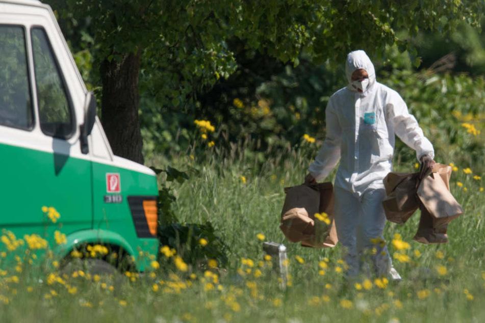 Die Leiche der Frau wurde am Mittwochmorgen in einem Frankfurter Park gefunden.