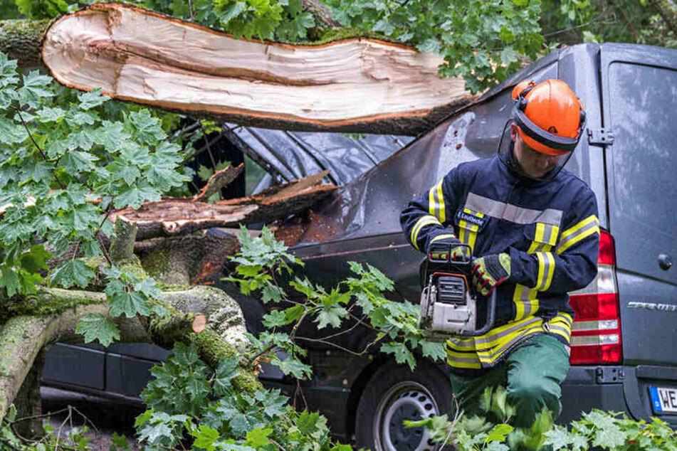 Ein Feuerwehrmann kämpfte sich mit einer Kettensäge zum Wrack des Mercedes durch.
