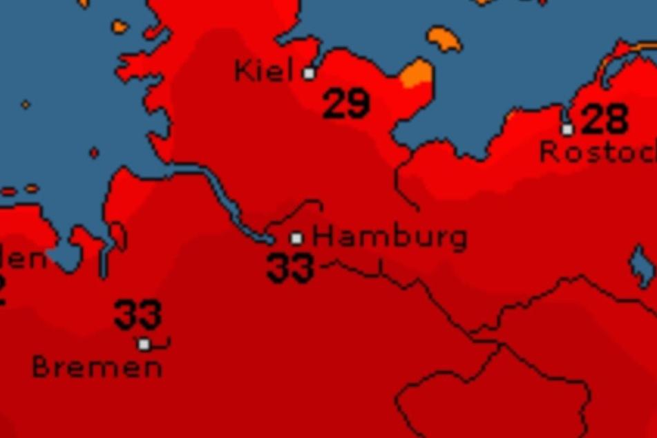 Höchstwerte von 33 Grad erwarten uns kommende Woche in Hamburg.