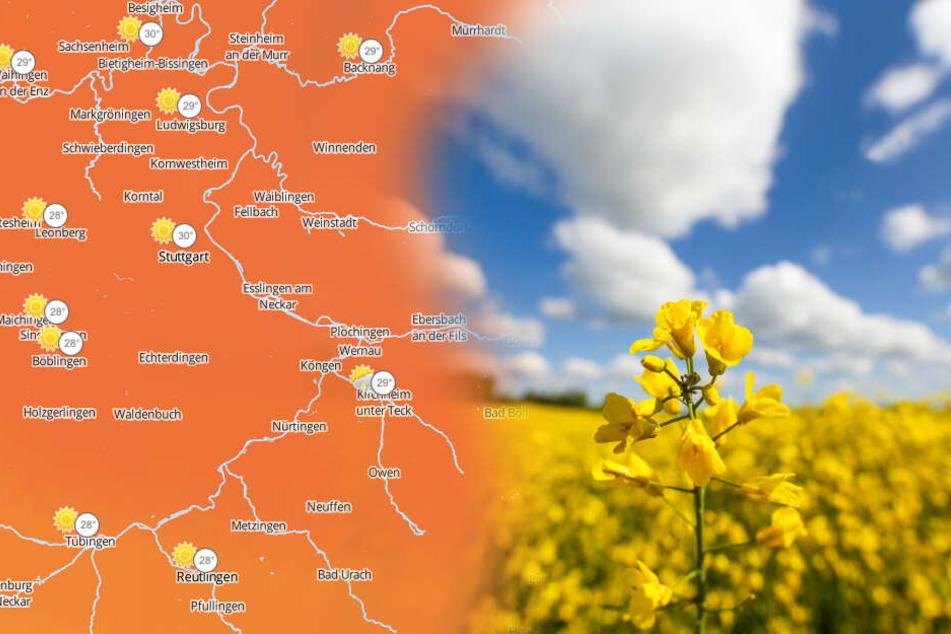 Hitze und Gewitter-Risiko: So wird das Wetter am Wochenende