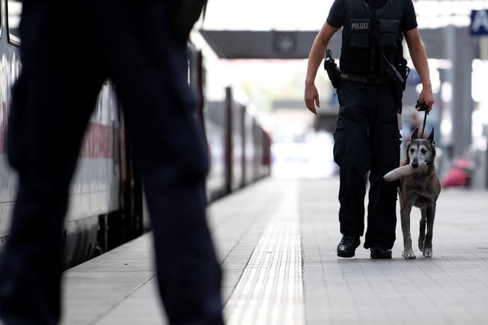 Die Polizei setzte auch zwei Sprengstoffspürhunde ein (Symbolbild).