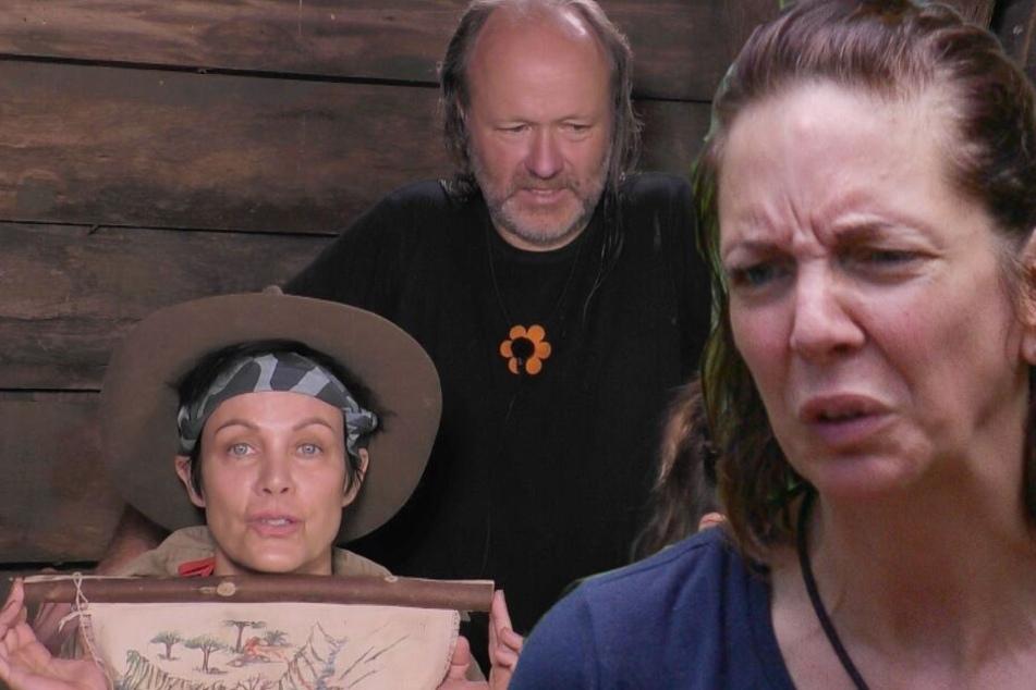 """Dschungelcamp: Dschungelcamp Tag 11: Eskalation in der Danni-Show! """"Es war großartig"""""""