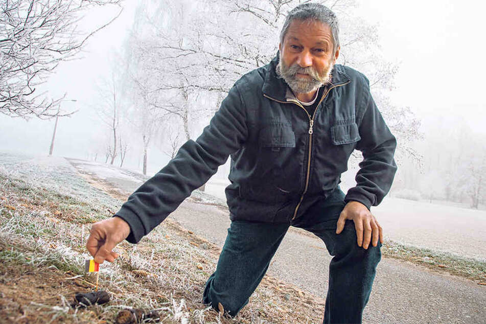 Friedmar Gaertner (55) markiert die Hundehaufen rund um sein Grundstück mit Fähnchen. Er hofft, dass die Besitzer der Vierbeiner so ein schlechtes Gewissen bekommen.