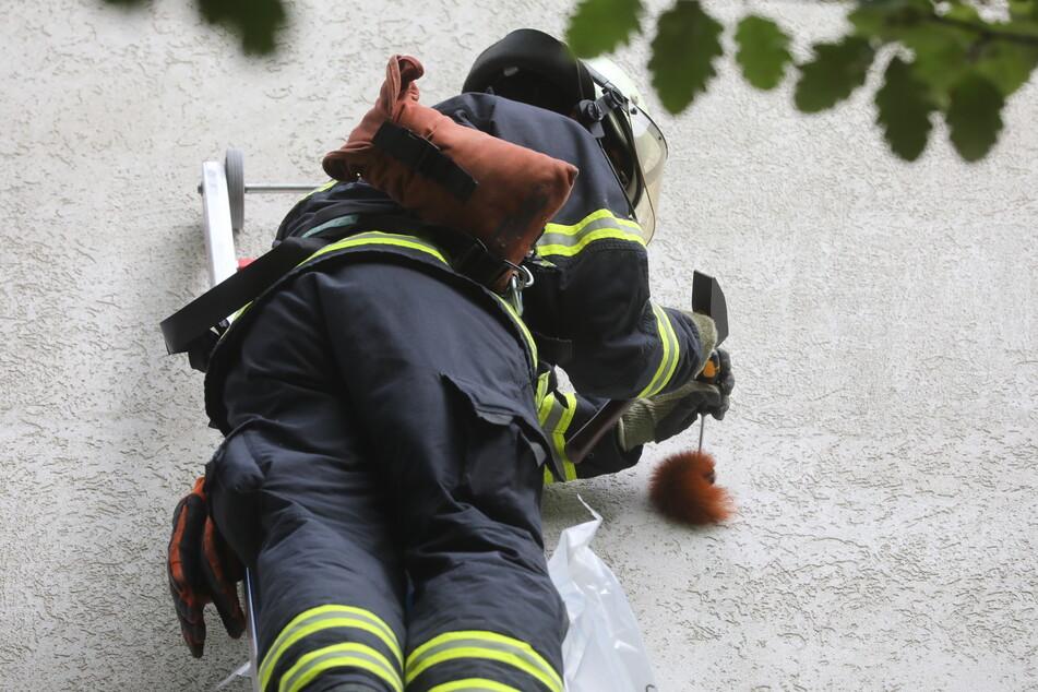 Ungewöhnlicher Einsatz: Feuerwehr hämmert Eichhörnchen aus der Wand