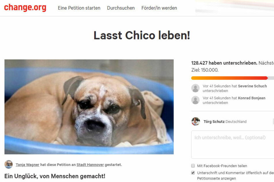 Tanja Wagner fordert, dass Chico gerettet wird.