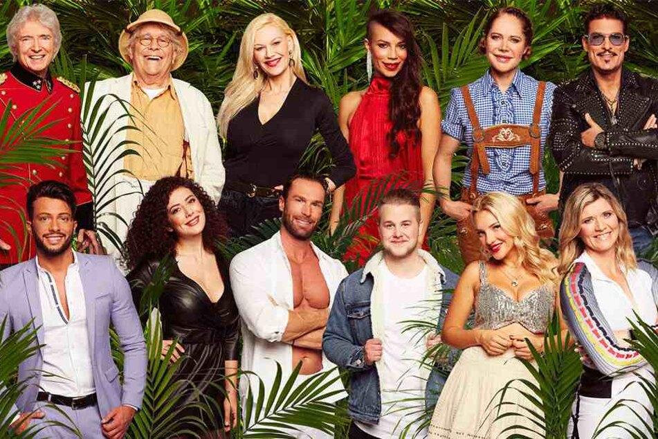 Das sind die Kandidaten fürs Dschungelcamp!
