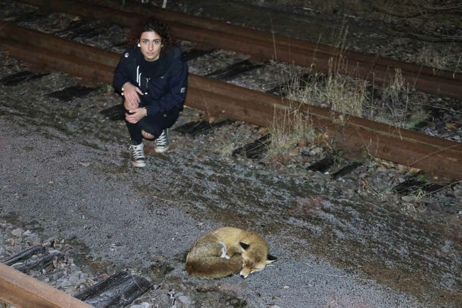Michelle Krippner passte zwei Stunden auf das Tier auf.