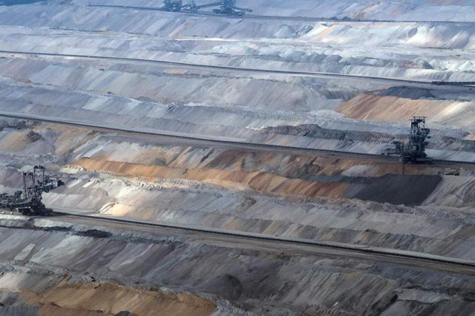 Im Streit um die Rodungen will die Bezirksregierung Arnsberg noch in dieser Woche entscheiden, wie es beim umstrittenen Tagebau Hambach weitergeht.
