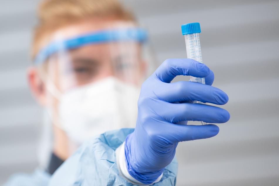 Forscher: Coronavirus breitet sich in trockenen Räumen stärker aus!