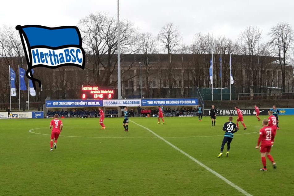4:1 gegen Bielefeld: Treffsichere Stürmer lassen Hertha jubeln