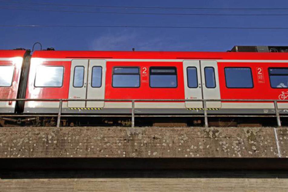 Der Musiker vergaß seinen Bogen in der S-Bahn. Leider fiel er einem unehrlichen Finder in die Hände.