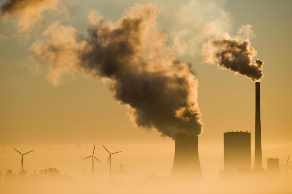 Solche Rauchwolken aus Kohlekraftwerken werden immer seltener, die Industrie hat den CO2-Ausstoß stark reduziert.