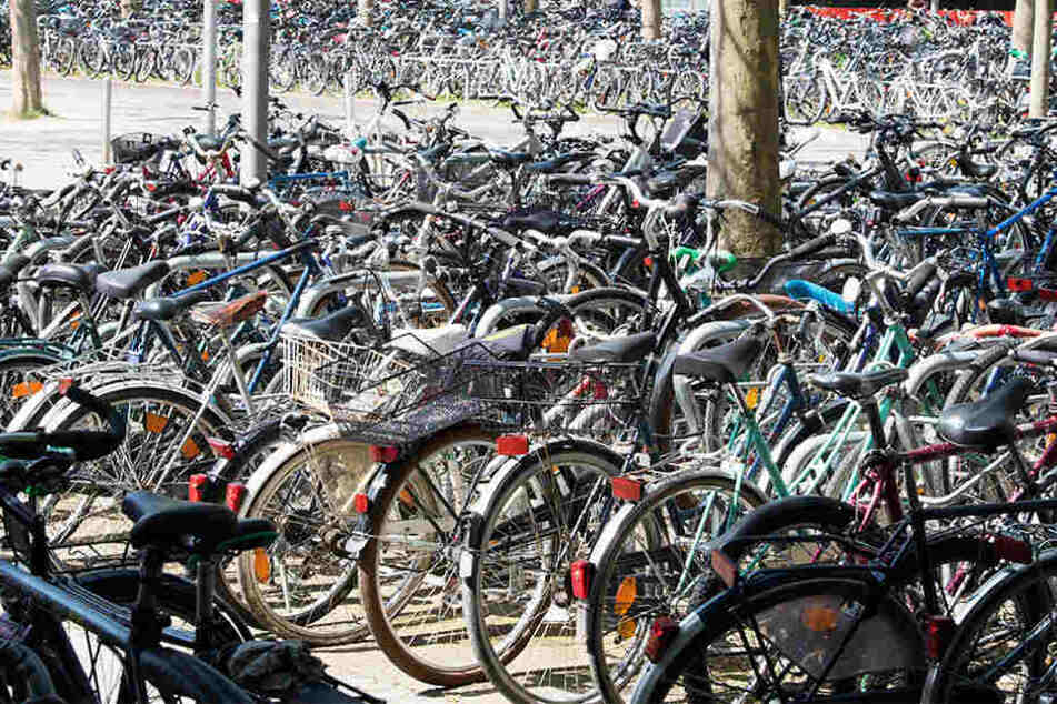 Im Hauptbahnhof werden ab 14 Uhr Fahrräder versteigert.