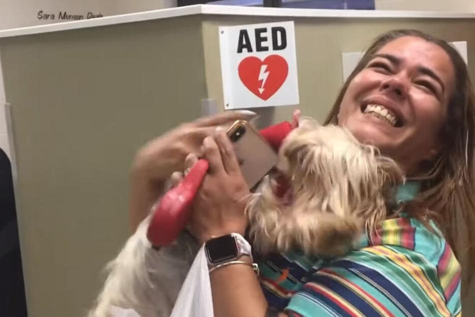 Familie vermisst Hund seit drei Jahren, als das Telefon klingelt