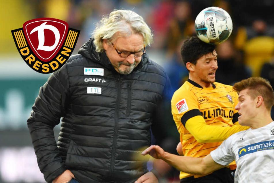 Dynamo Dresden bleibt auch mit Heiko Scholz im Sumpf stecken: Nur 1:1 gegen Sandhausen