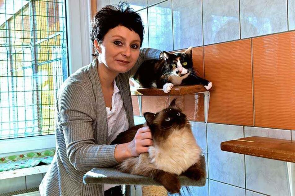 Zum Kuscheln, aber pflegebedürftig: Bei Tierasyl-Leiterin Denise Putsche (37) können Sie Tierpatenschaften übernehmen.