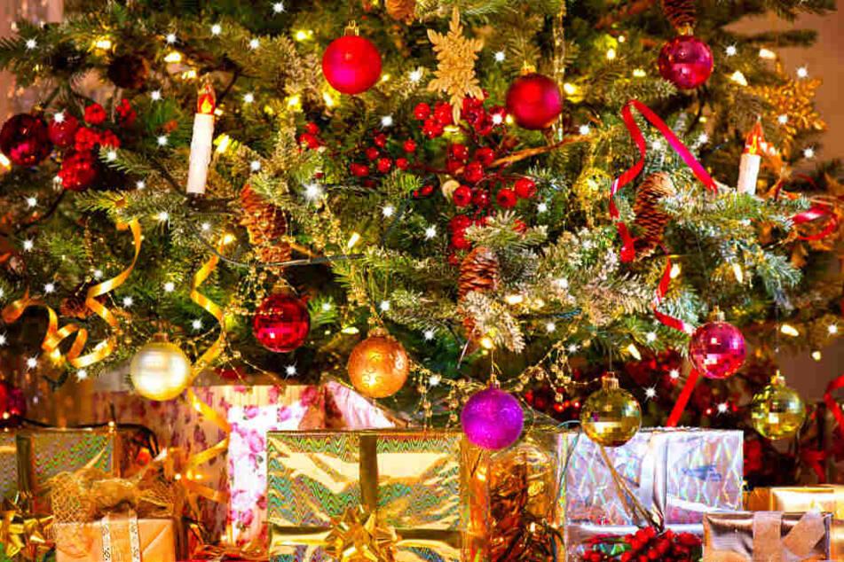 Ist ein Weihnachtsbaum im Topf nachhaltiger? (Symbolfoto)