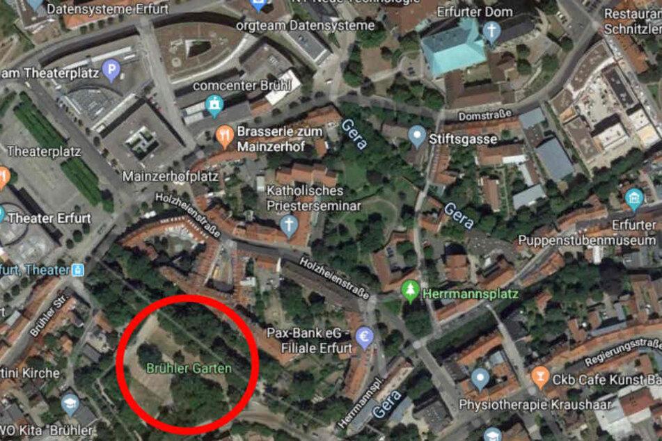Der Park (roter Kreis) liegt nur einige Straße hinter dem Erfurter Dom (oben rechts) und neben dem Erfurter Theater.