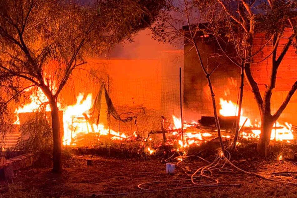 Waldbrände wüten in Europa: Mehrere Ferienorte vom Feuer bedroht, Urlauber evakuiert