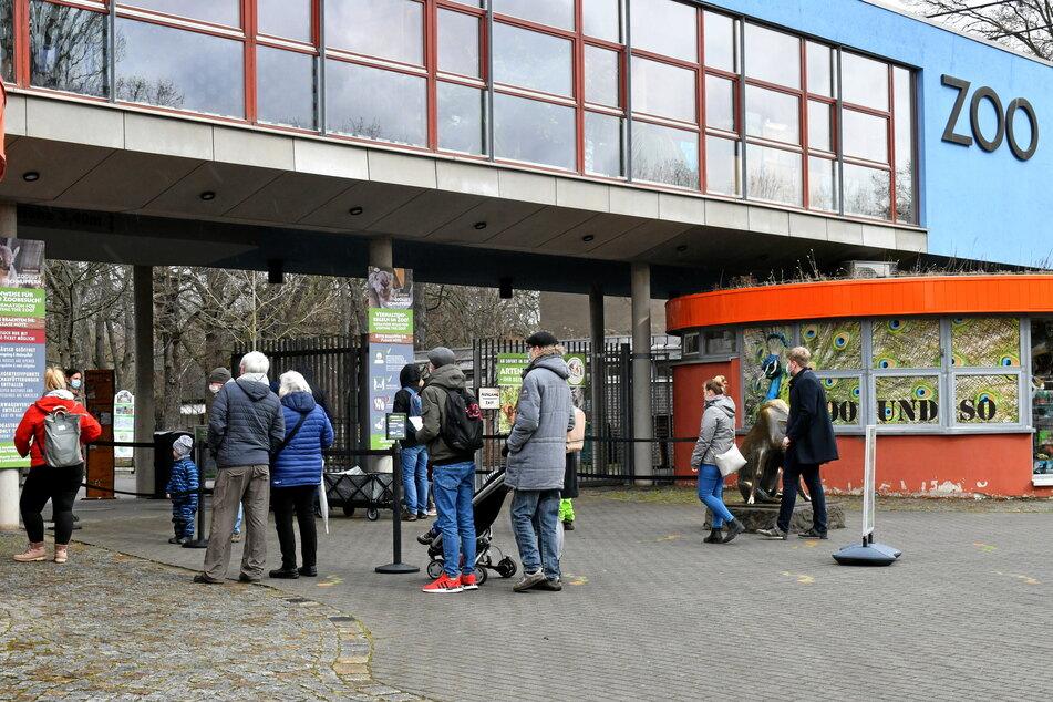 Rund 1200 Besucher kamen am ersten Tag wieder in den Zoo.