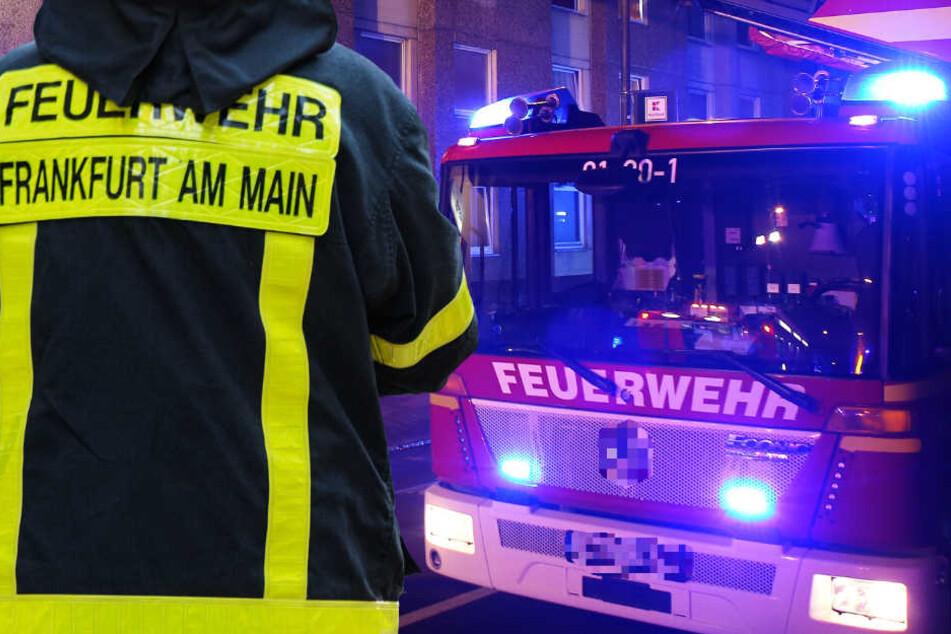 Brandstiftung? Liebigschule in Frankfurt in Flammen