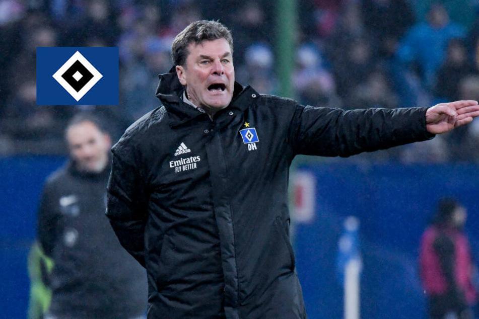 HSV-Trainer Hecking lässt sich trotz Niederlagen nicht aus der Ruhe bringen