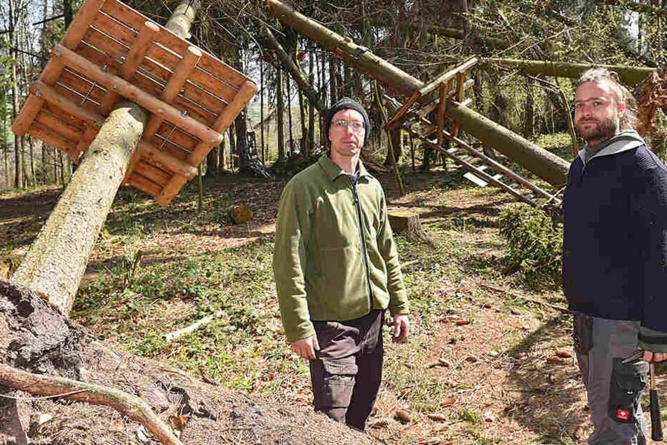 Zu viele Bäume beschädigt! Droht dem Kletterpark an der Talsperre Malter das Aus?