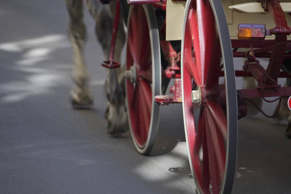 Der Kutscher und zwei Pferde wurden bei dem Unglück verletzt.