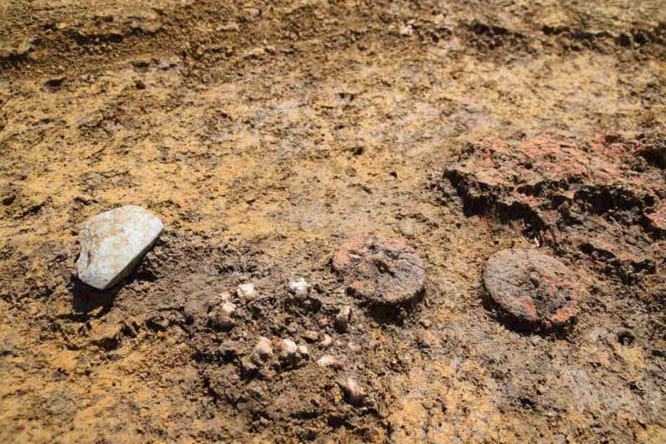 In einem 4000 bis 5000 Jahre alten Grab in Schwaben haben Archäologen zwei Miniräder aus Ton als Grabbeigaben in einem Kindergrab aus der Kupferzeit entdeckt.