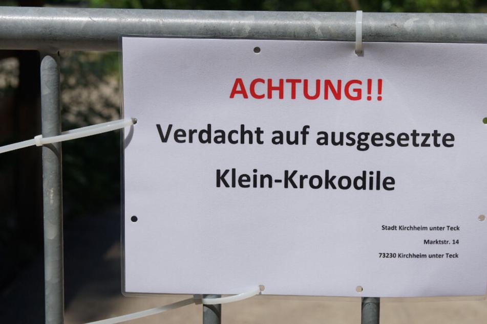 Krokodil-Alarm an Badeseen! Polizei sperrt Gelände