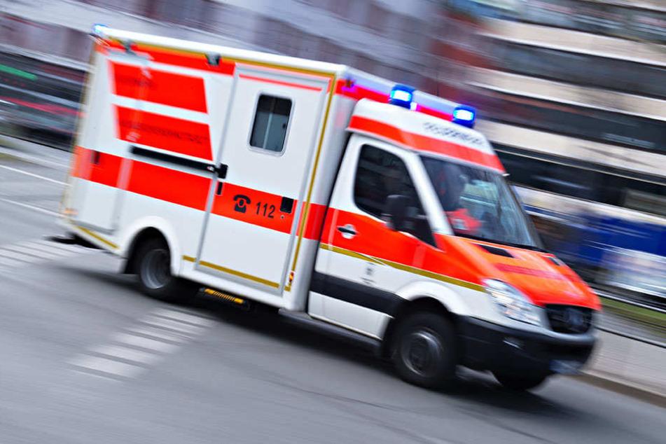 Bei einem Frontalcrash wurden fünf Personen und ein Hund verletzt (Symbolbild).