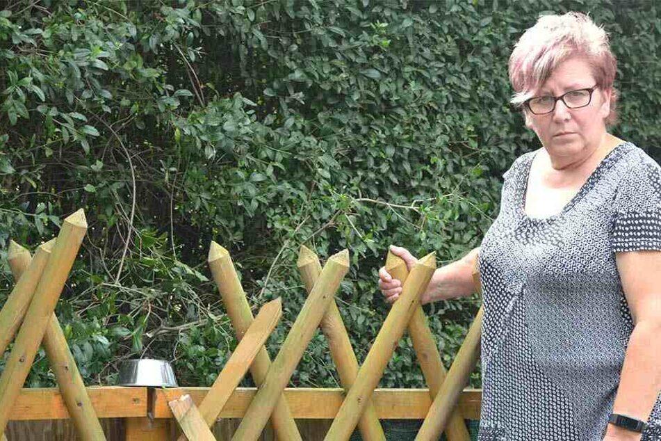 Martina Mucke (55) vermutet, dass die Einbrecher über den Zaun kamen.