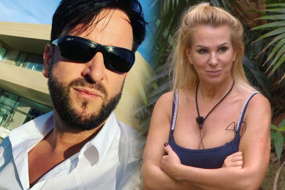 Dschungelcamp: Dschungelcamp: Lügt Claudia Norberg schon wieder? Michael Wendler sauer auf seine Ex