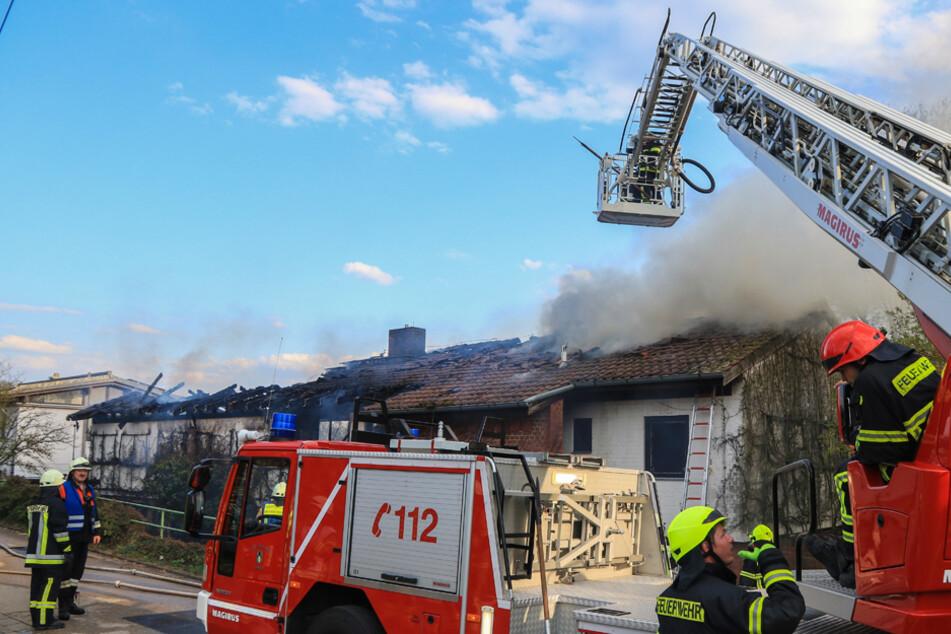 Wohnhaus zerstört: Älteres Paar rettet sich aus der Flammenhölle