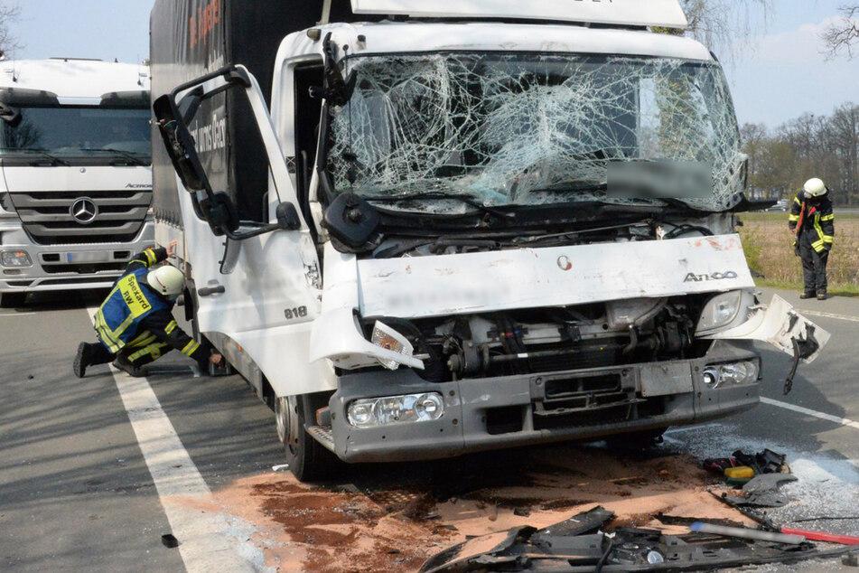Schlimme Kettenreaktion: Lkw-Fahrer bremst für Entenfamilie, zwei Laster können nicht mehr reagieren