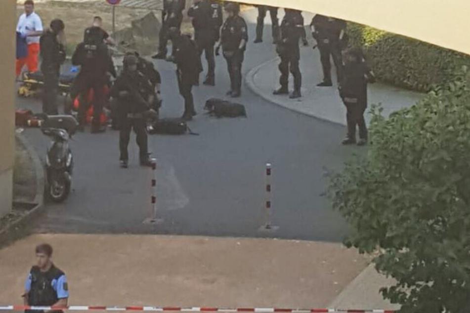 Zahlreiche Polizisten sind in der Trauchauer Straße im Einsatz.