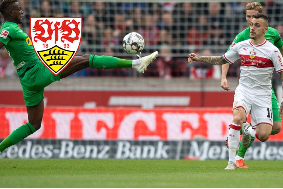Willig-Effekt! Aggressiver VfB kämpft Gladbach nieder