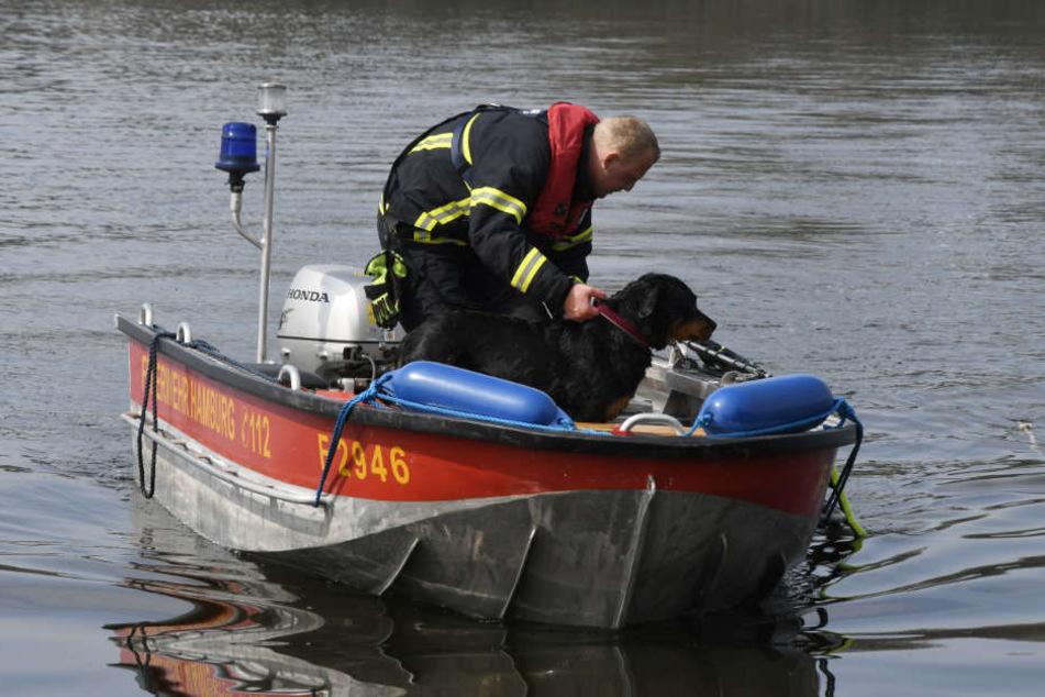 Per Boot haben die Feuerwehrleute Hündin Lotte aus dem Öjendorfer See gerettet.