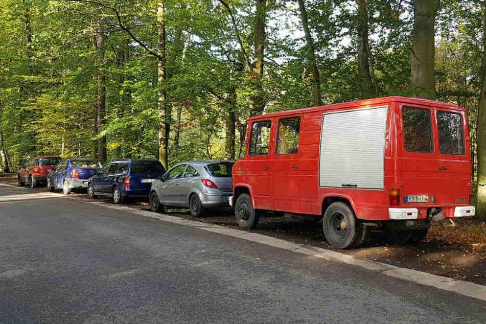 Andrang am Waldesrand: Wegen der Schwamme-Schwemme werden selbst Wege und Holzlagerplätze zugeparkt.