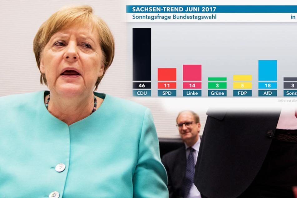 Neue Umfrage zur Bundestagswahl: Sachsen liebt Merkel UND AfD