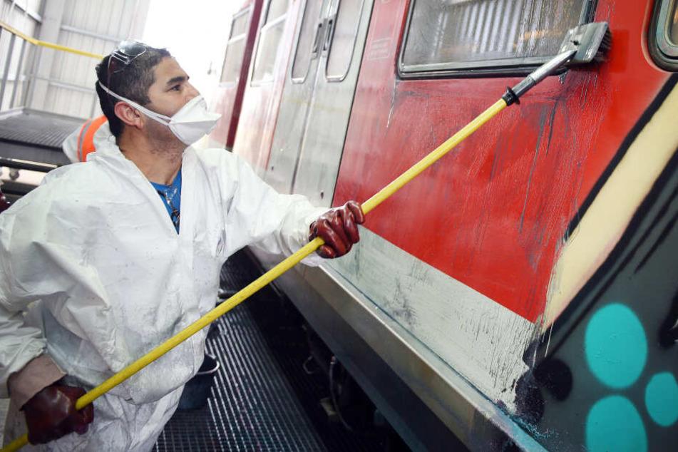 Graffiti-Schmierereien kosten Deutsche Bahn Millionen Euro: Täter haften