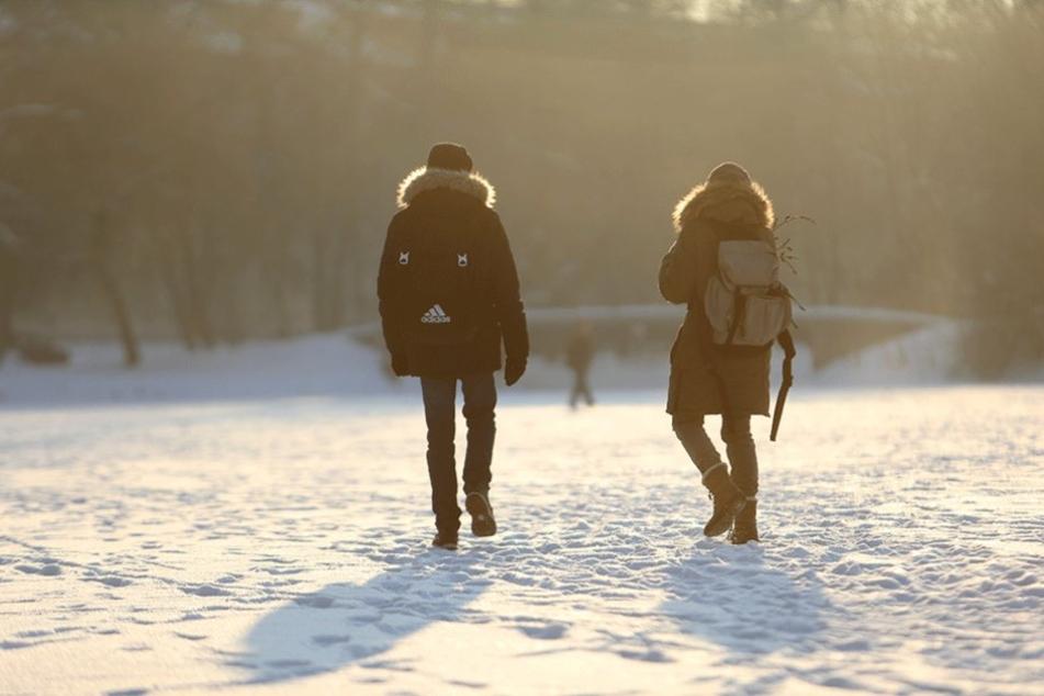 Idylle pur! Das herrliche Sonnenwetter mit den eisigen Temperaturen lädt viele Chemnitzer zum und auf den Schlossteich ein.