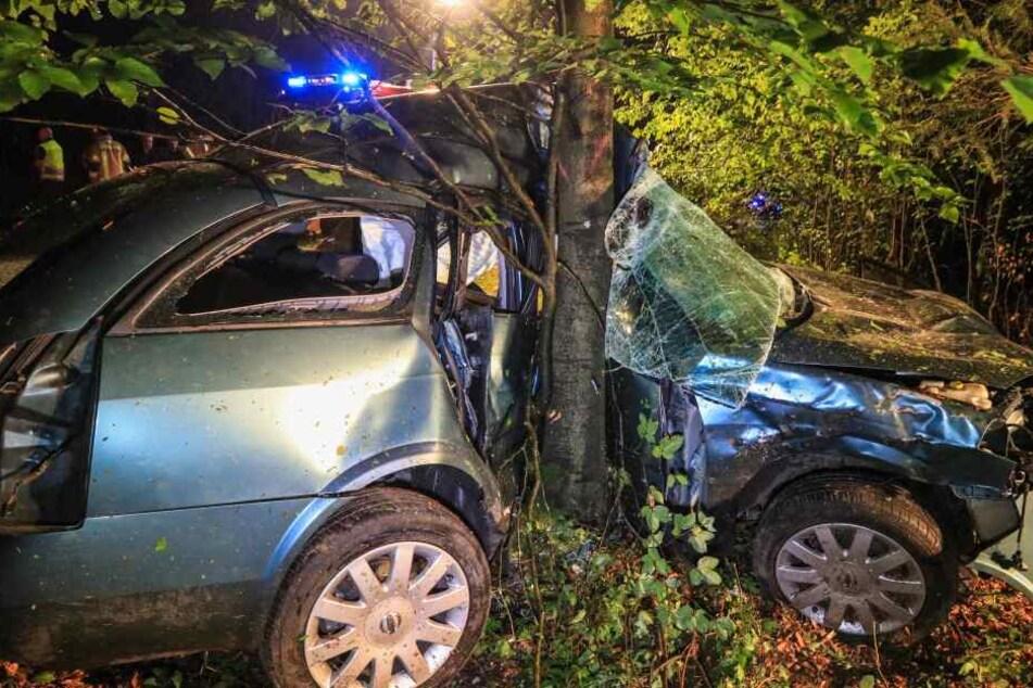 Der Wagen schlug seitlich in den Baum ein.