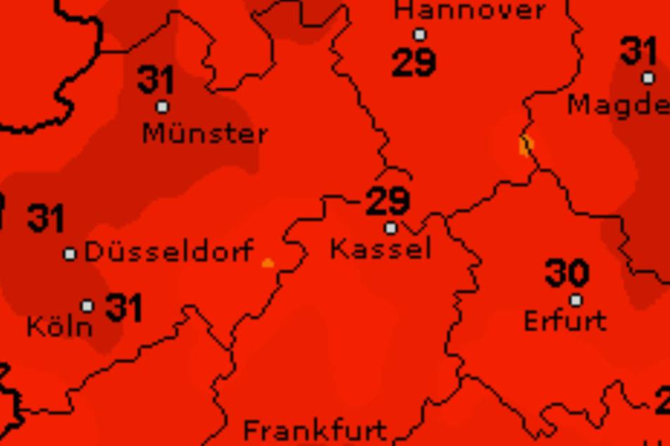 Hochsommerliche Temperaturen erwarten uns kommende Woche.