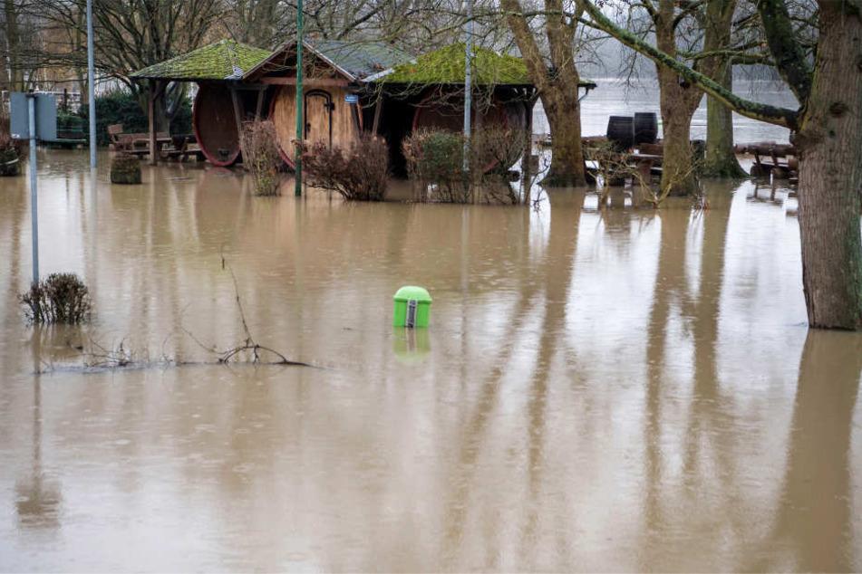 Die Rheinanlage am Rheinufer in Hattenheim wurde überflutet.