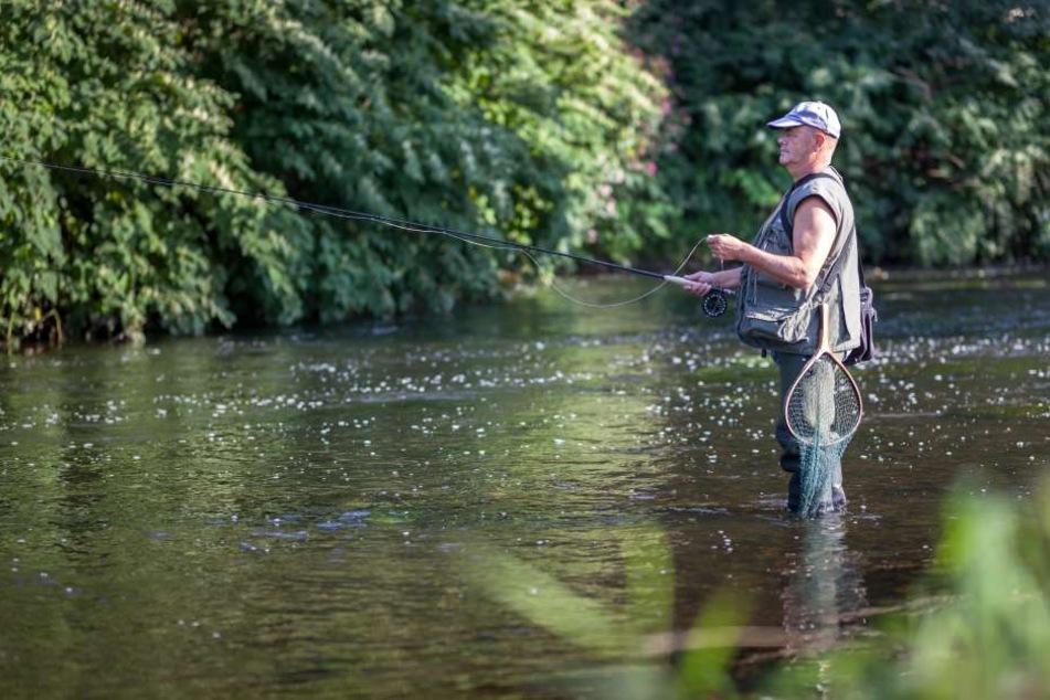 Angler Gerhard Petzenburg (72) hofft, dass bald wieder Lachse in der Chemnitz schwimmen.